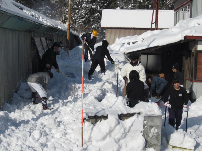徐排雪事業